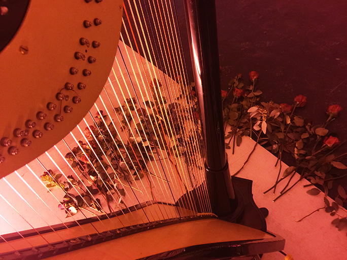 Erin Hill's electric harp, V'ger, surrounded by roses
