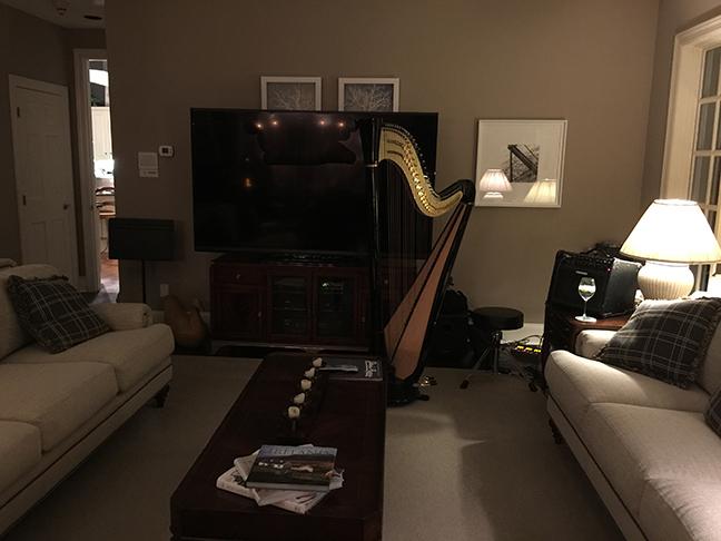 Erin's harp on Long Island
